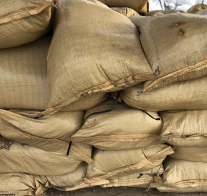 Sandbag Distributions Across the Rio Grande Valley